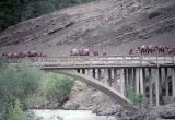 Camel train crossing an arch bridge