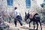 Main in tradition Turkish pants leading donkey with large saddle
