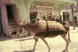 Donkey carrying full bags