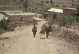 Man with two donkeys, one carrying a blanket and one carrying large bags