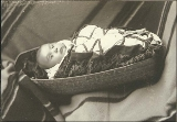Indian baby in basket, ca. 1893.