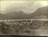 Klondikers camping with tents on the Chilkoot Trail at Lindeman Lake, British Columbia, 1897.