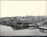 Waterfront in the vicinity of Washington St., Seattle, Washington, June 5, 1891.
