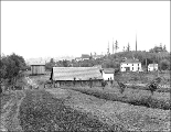 Farm buildings and houses at S. Orcas St. and 18th Ave. S., Seattle, Washington, 1911
