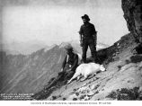Victor Denny and Lawrence Lindsley with dead mountain goat, near Glacier Peak, 1901