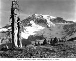 Nisqually Glacier on Mt. Rainier at sunrise, July 4, 1925