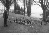 Frank Atkins feeding ducks at Madison Park on Lake Washington, December 20, 1956