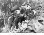 Dead bear and four men with rifles, Lake Chelan, ca. 1910