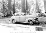 Lawrence Lindsley's car at Le Poil Auto Park Camp Ground, Lake Crescent,  1963