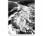 Foam formed by wind, on the shore of Soap Lake, June 29, 1945