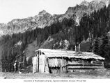 Old miners' cabin, Ptarmigan Park, near Esther Mines, 1899