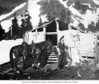 Lawrence Lindsley and horse at miners' cabin, Ptarmigan Park, near Esther Mines, June 1900