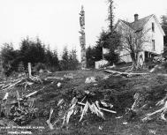Tlingit totem pole, Chief Shakes' home on hillside at  Wrangell, Alaska, ca. 1904