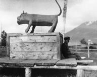 Gitksan totem of a cougar or mountain lion, Kitwanga, British Columbia, 1910