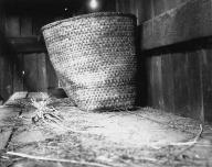 Hoh basket inside cabin, Hoh Indian Reservation, Washington, 1905.