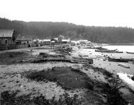 Makah village showing canoes on the beach, Neah Bay, Washington, 1905.