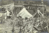 Chilkat fishing camp near the Chilkat River,  Alaska, 1894