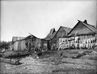 Fishing camp at Wing Point on Bainbridge Island, ca. 1905