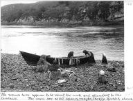 Tlingit women and children cleaning fish on beach, southeastern Alaska, ca.1907