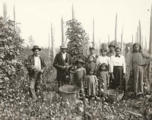 Puget Sound Indians posing in hop fields, White River Valley, Washington, 1902