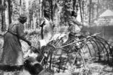 "Colville women smoke salmon over fire, ""Ceremony of tears"", Kettle Falls, Washington,..."