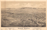 Bird's Eye View of Walla Walla, Washington Territory, 1876.