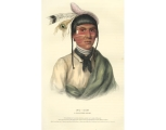 No-Tin, a Chippewa chief