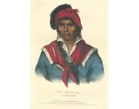 Nea-Math-La, a Seminole chief