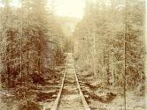 Wooden tramway rails of the Canyon and White Horse Rapids Tramway Company, Yukon Territory, ca....