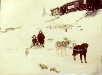 Dogsled team and children, Dawson, Yukon Territory, ca. 1899.