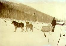William Steinberger taking supplies from Dawson to his store on Bonanza Creek, Yukon Territory,...