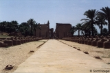 Avenue of the Sphinxes leading to the Temple of Karnak