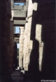 Great Hypostyle Hall, Temple of Amon (Karnak, Egypt) with birds