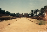 Avenue of the Sphinxes leading to the Temple of Karnak from a distance