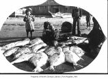 Native Americans cleaning fish, probably on an Olympic Peninsula beach