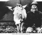 Native American man known as General Lee with a donkey, probably in Neah Bay