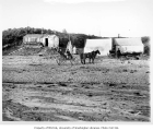Horse-drawn wagons by camp on beach at the Lakeside Mine, near Penny River, September 17, 1905