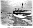 Steamship CORWIN at edge of ice with dogsled teams, Nome, June 1, 1907