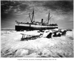 Steamship CORWIN at the edge of the ice with dogsled teams in foreground, Nome, 1907