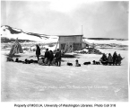 Dogsled teams outside of building, Cape York, ca. 1904