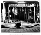 Alaskan and Siberian Fur Co. storefront, showing display of animal furs, skins, horns, Native...