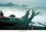 Rialto Beach stormy weather, Olympic National Park, date unknown