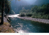Elwha River near Hayes River, Olympic National Park, date unknown