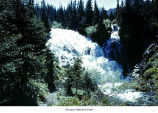 Cameron Creek falls near Grand Lake, Olympic National Park, date unknown