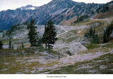 Cream Lake Basin, Olympic National Park, date unknown
