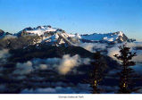 Mount Olympus viewed from Bogachiel Peak, Olympic National Park, date unknown