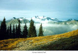 Mount Olympus viewed from High Divide, Olympic National Park, date unknown