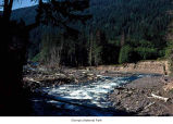 Elwha River near Humes Ranch, Olympic National Park, date unknown