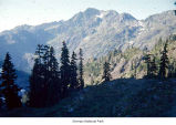 Gladys Divide view east, Olympic National Park, date unknown