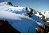 Mount Olympus glacier, Olympic National Park, date unknown